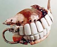 Dentures of George Washington